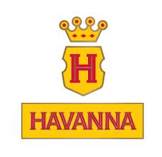 logo_Hava